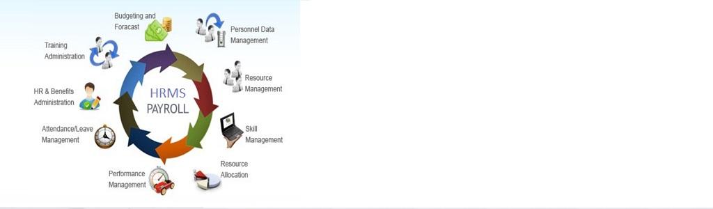 Naarappa Technologies Human Resource NAARAPPA HRMS HRIS Payroll Software Solutions Narappa