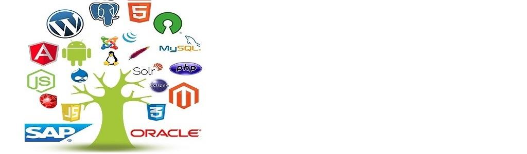 Naarappa Technologies Web base naarappa softwares Oracle SAP Software Solutions narappa